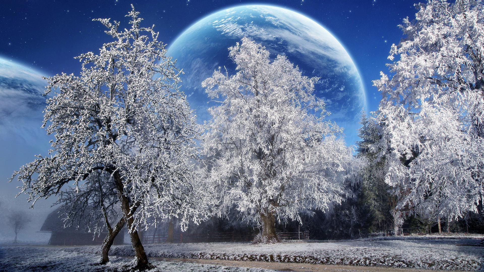 Winter Wallpaper Hd Picture 1920X1080 Wallpaper 32527 Label ...