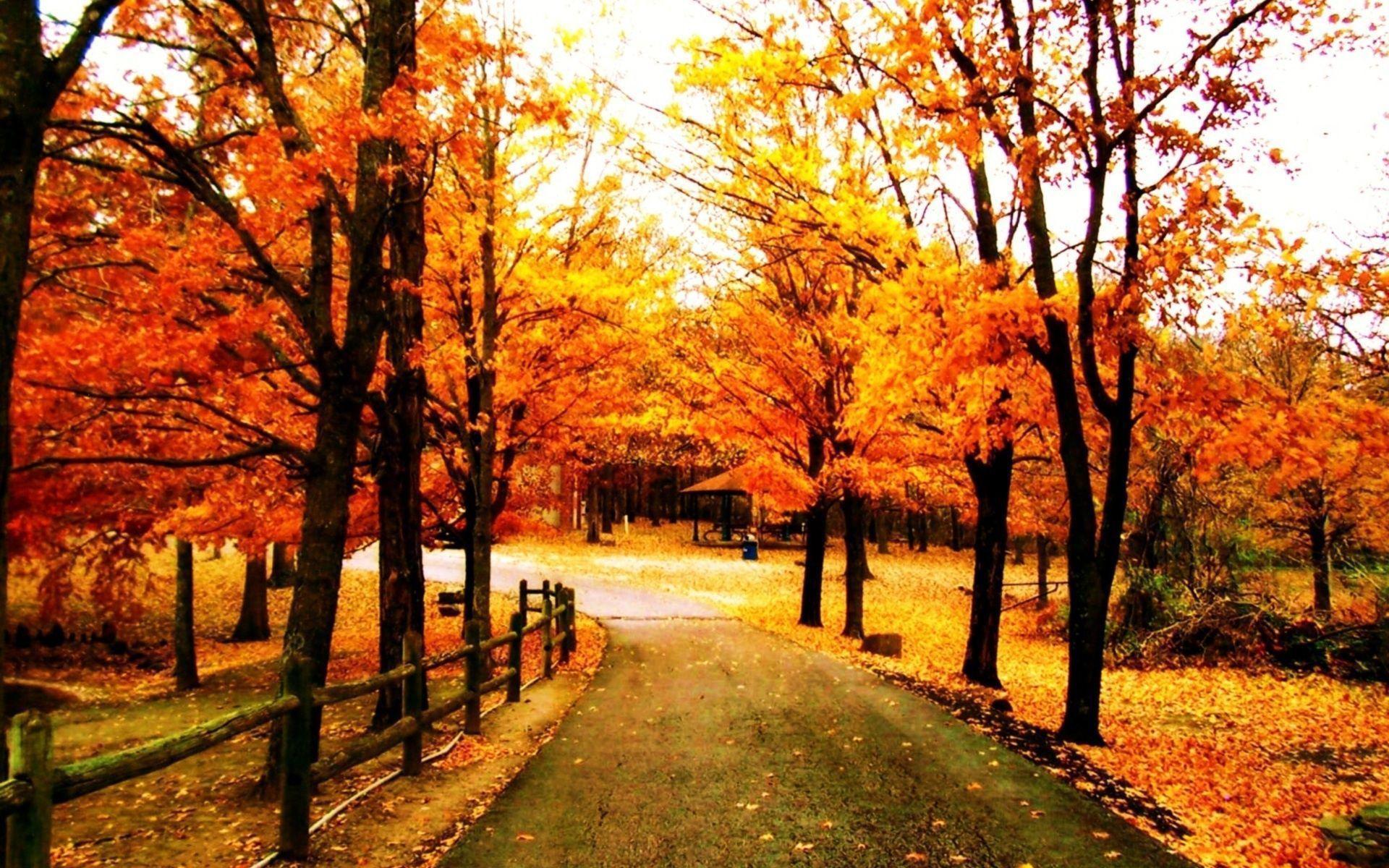 Beautiful Fall Backgrounds - Wallpaper Cave