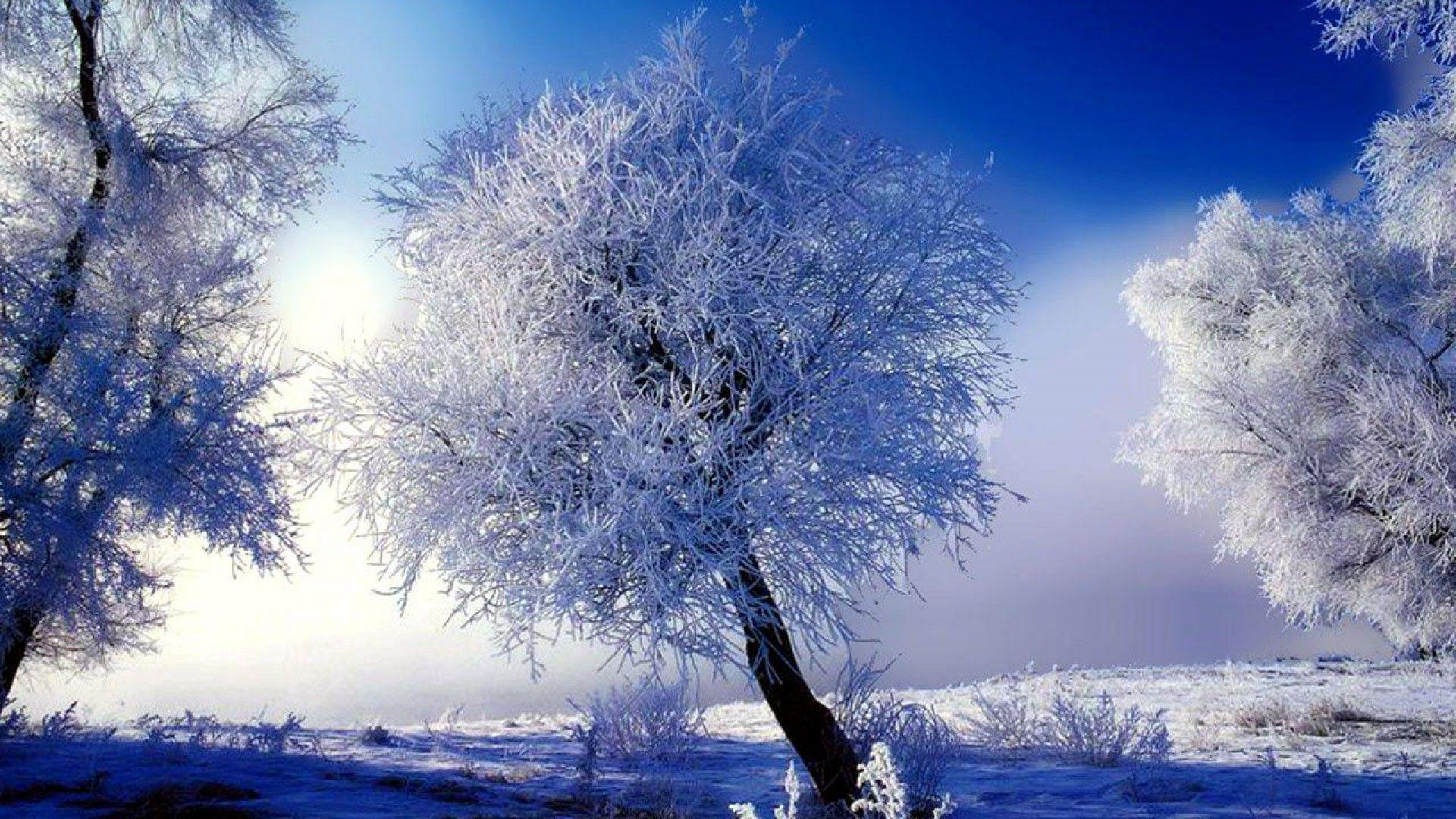 Winter wallpapers scenes wallpaper cave for Wall scenes