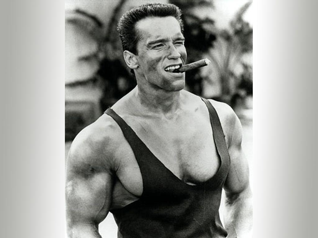 arnold schwarzenegger - photo #30