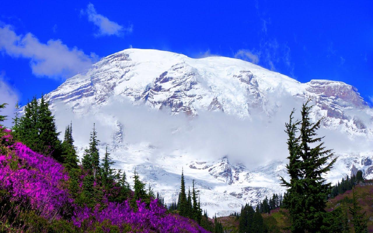 Mount Rainier National Park Wallpapers - Wallpaper Cave
