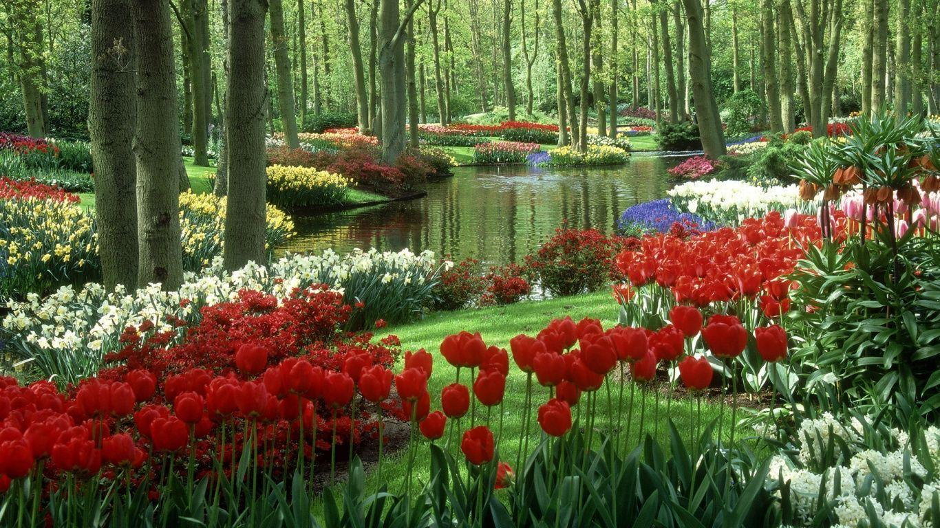 Wallpapers For > Flower Garden Wallpaper Free Download