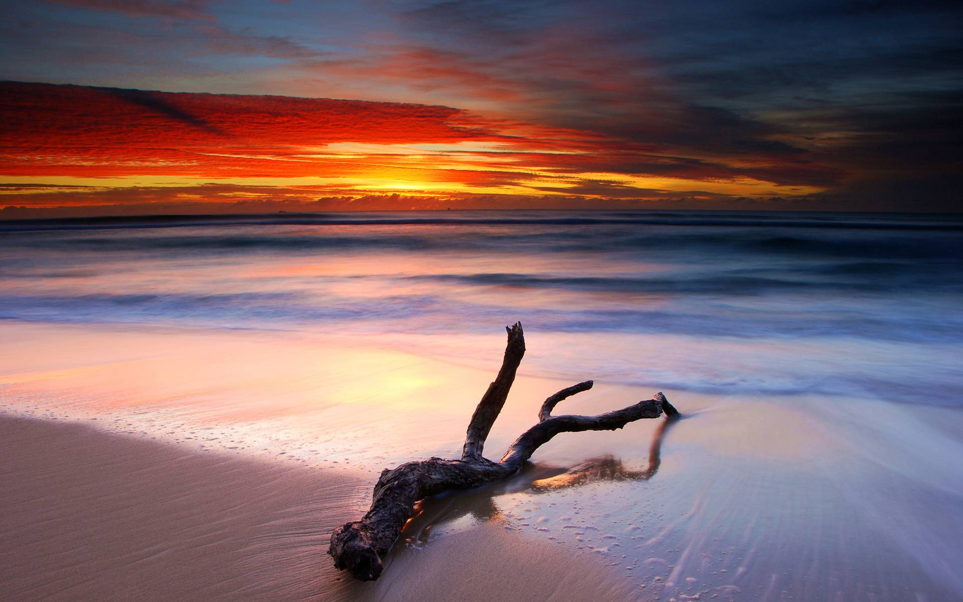 sunset beach nature sea - photo #8