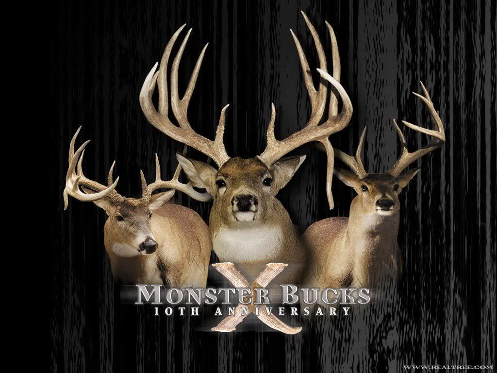 Non Typical Rack   Beautiful Art   Pinterest   Deer hunting, Nice ...