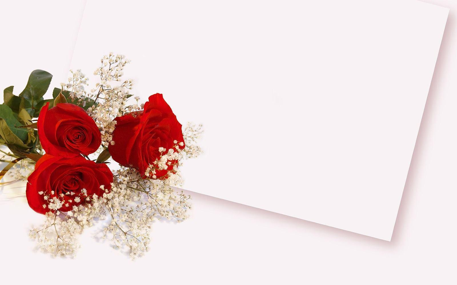 Red rose flower backgrounds wallpaper cave - Red flower desktop wallpaper ...