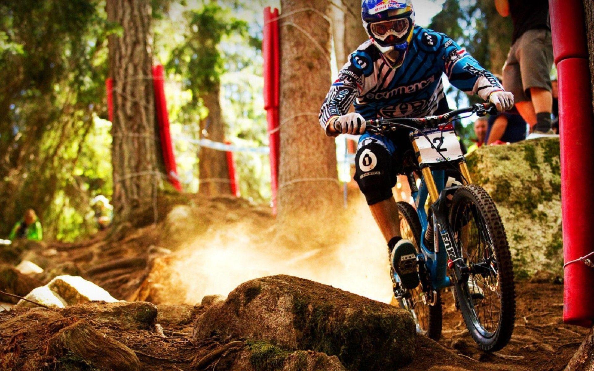 Downhill MTB Bike Picture