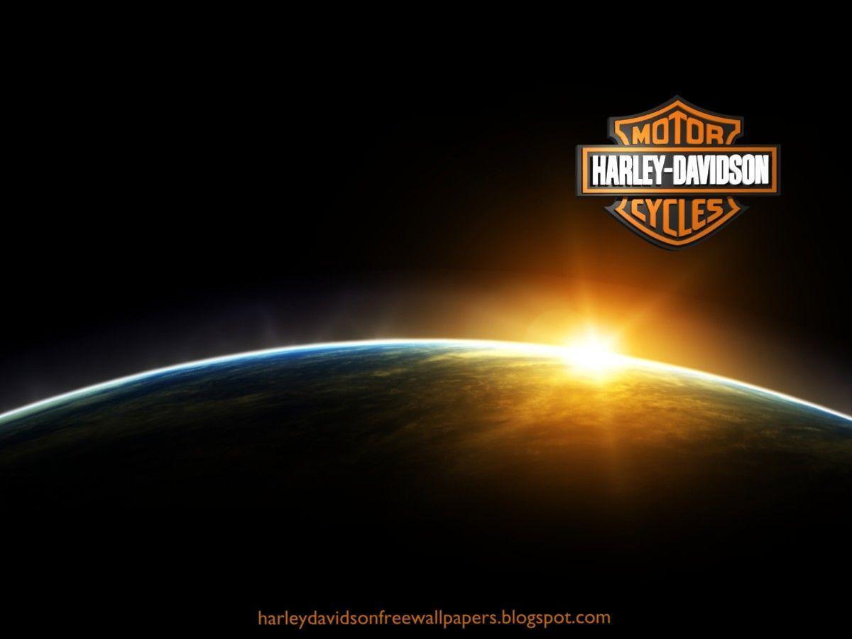 Download Harley Davidson Bikes Free Wallpaper 1200x900