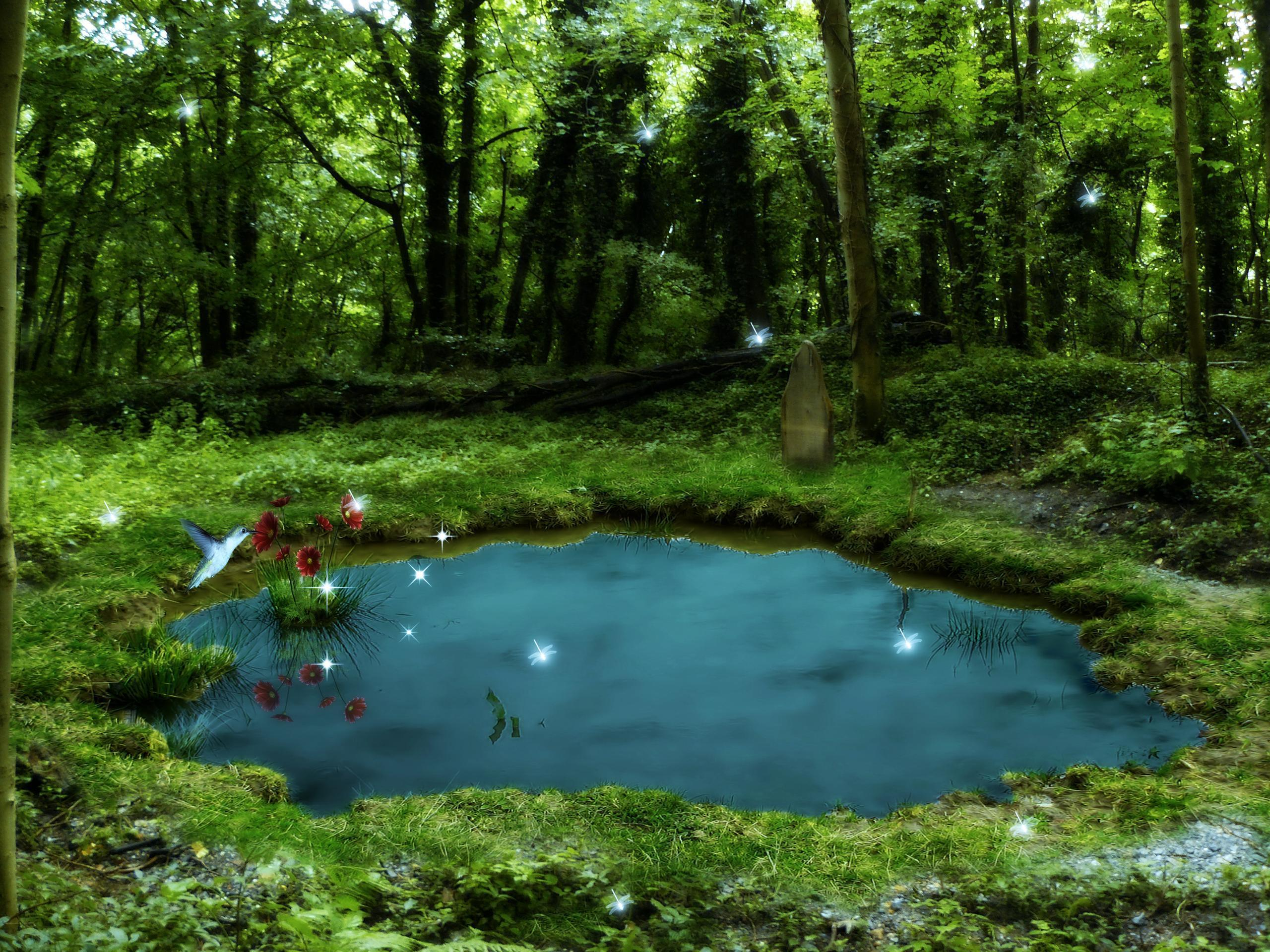 Pond wallpapers wallpaper cave for Small natural pond