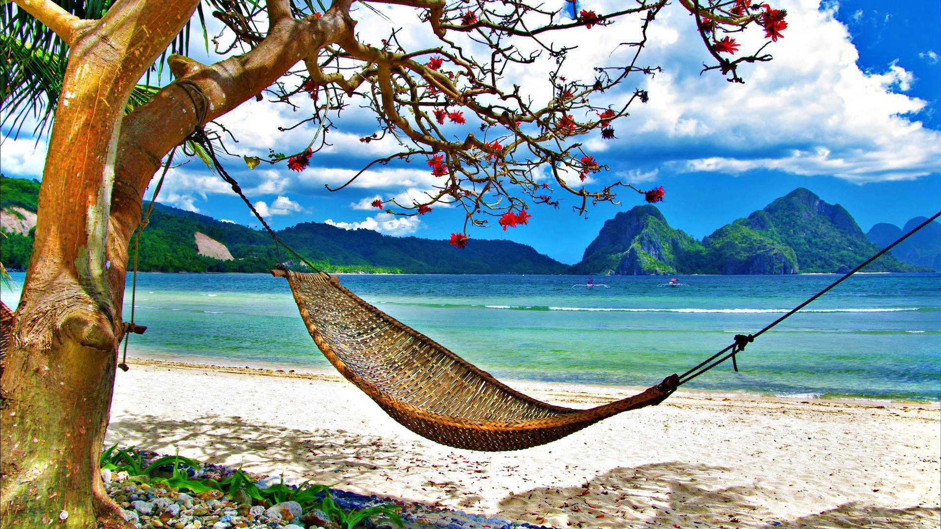 hammocks and hammock stands at ace hardware beach hammock wallpaper  rh   jeuxguerre info