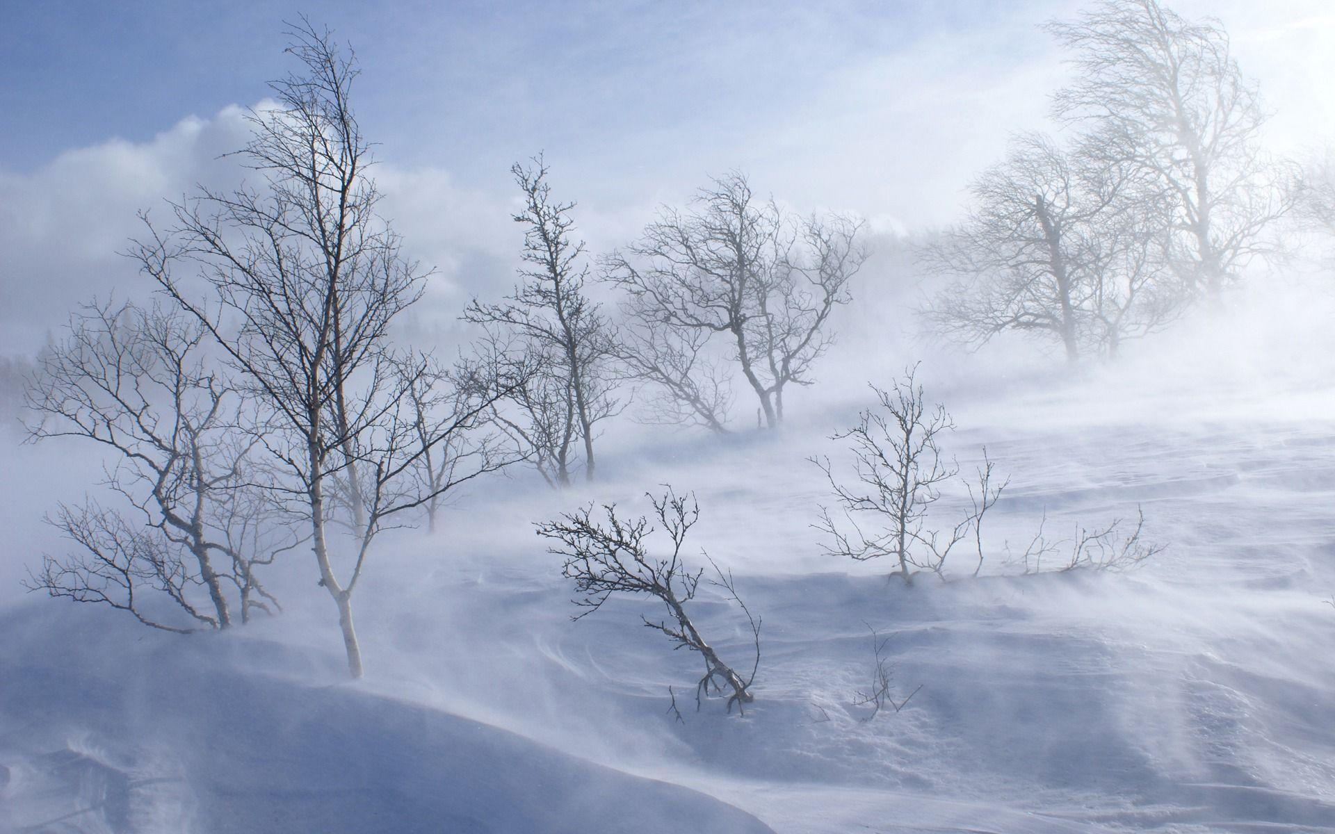 Snow Storm Wallpapers - Full HD wallpaper search