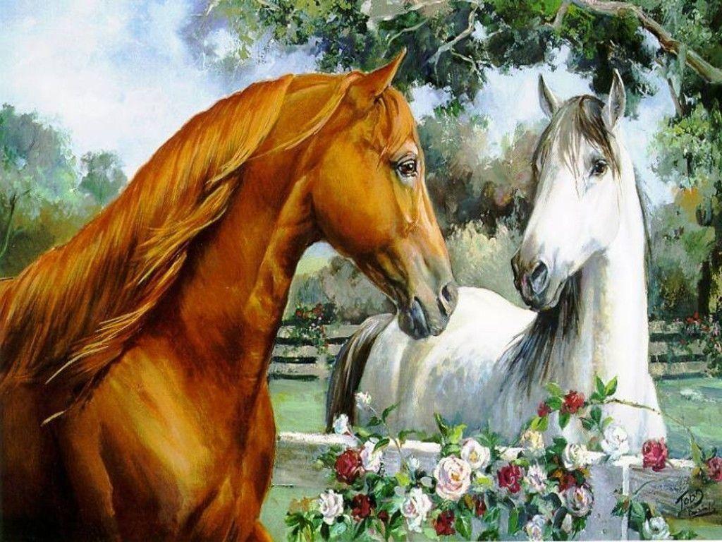 More horse wallpapers! - Horses Wallpaper (15705283) - Fanpop