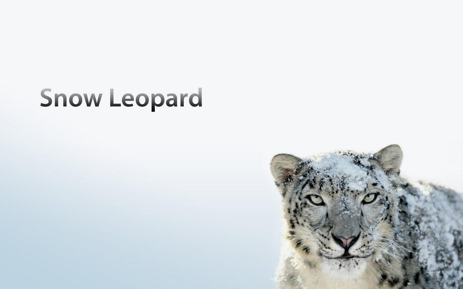 Mac OS X Snow Leopard Wallpapers HD