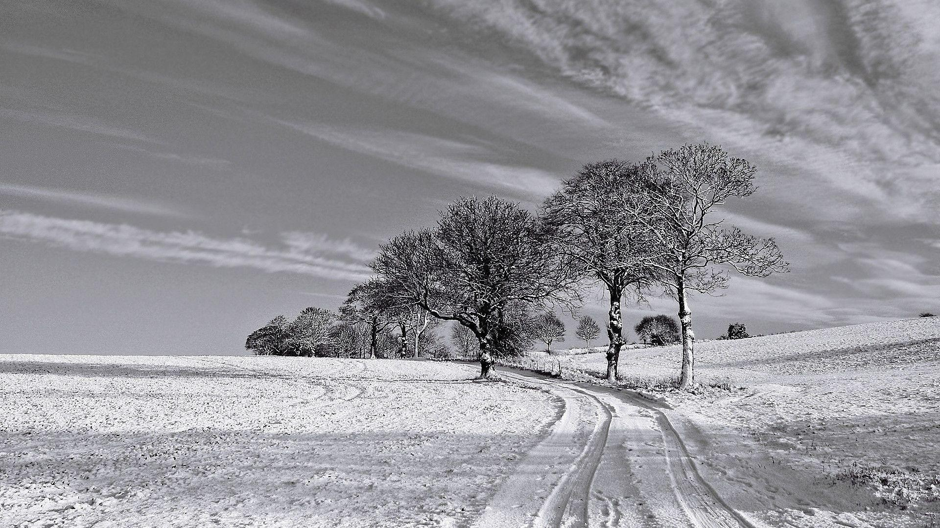 1920x1080 Black and White Winter desktop PC and Mac wallpaper