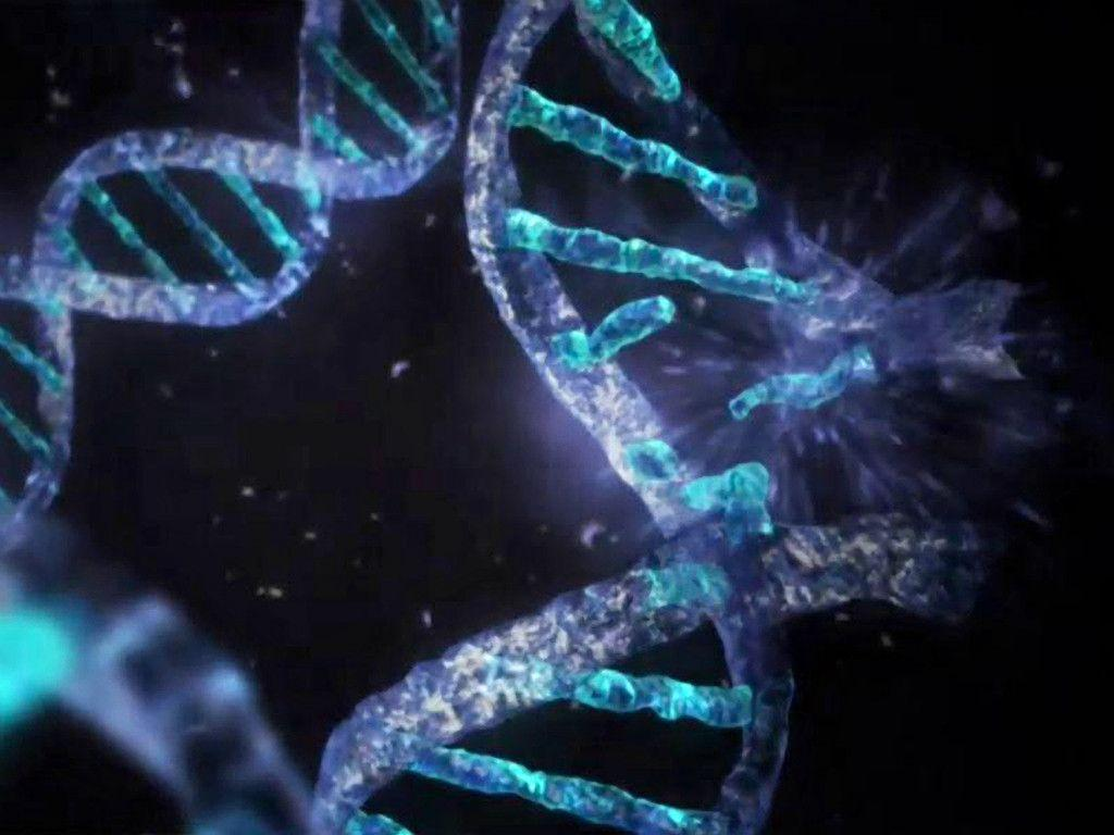 Genetic engineering research papers