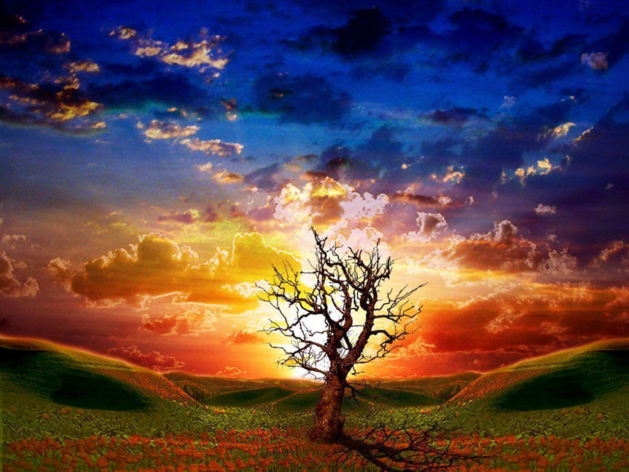 3D Nature Wallpaper Hd Background Wallpaper 50 HD Wallpapers ...