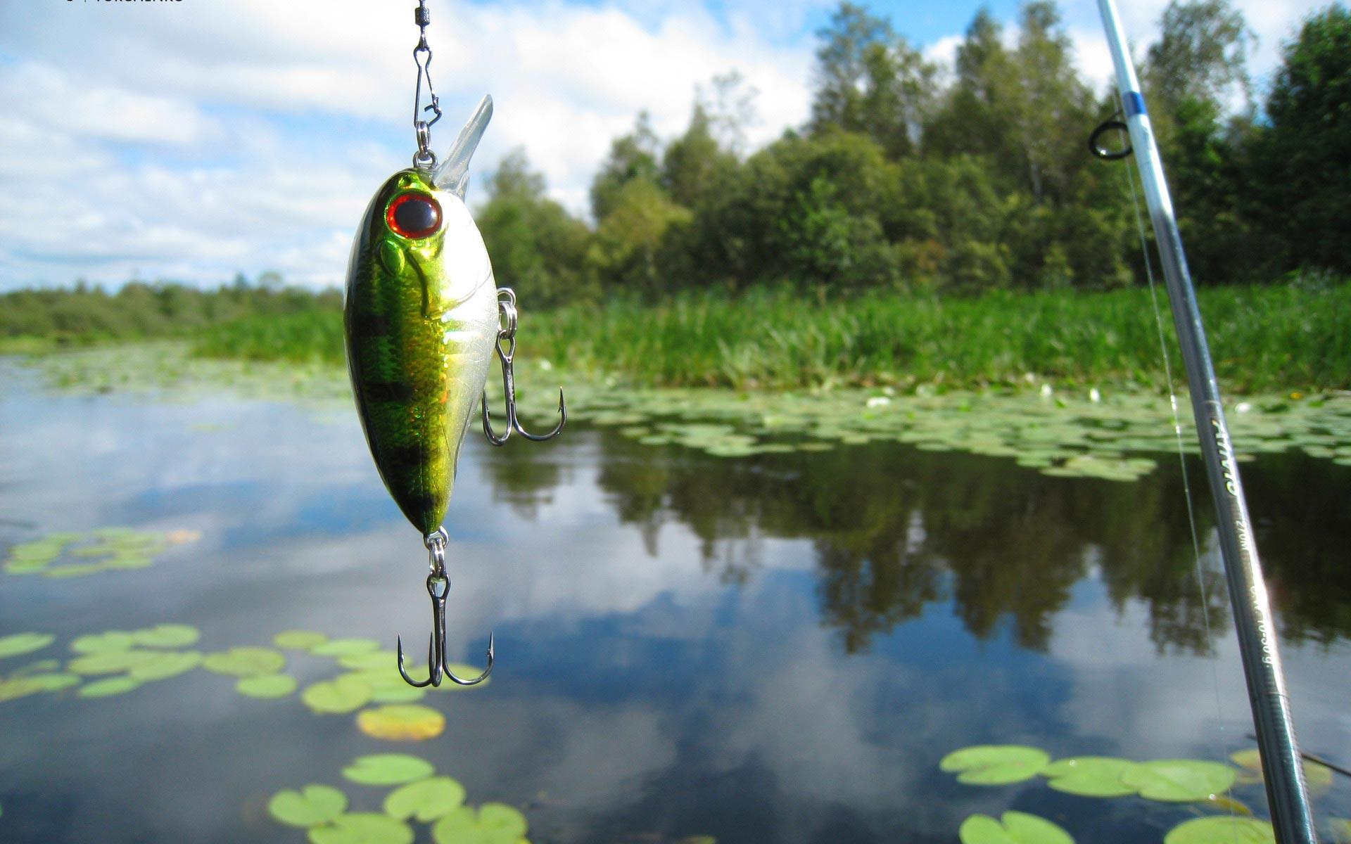 fishing lure wallpaper - photo #2