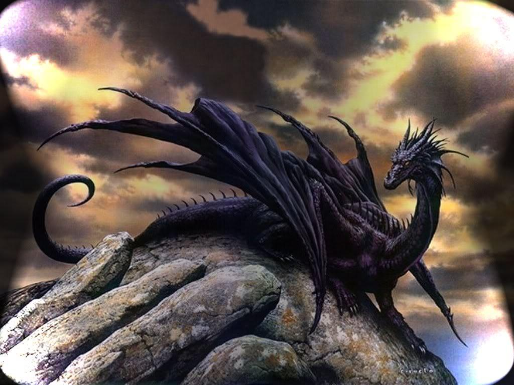 Wallpapers For > Black Dragon Wallpapers