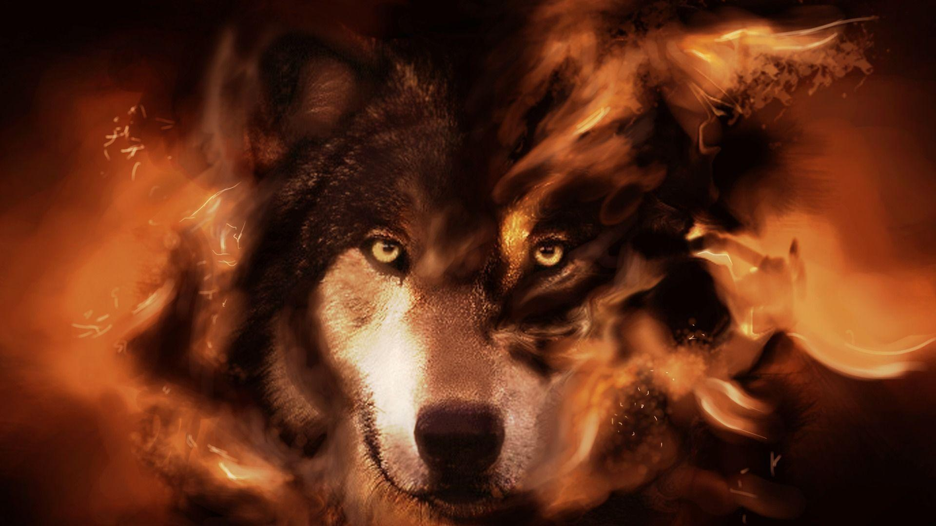 fantasy wolf wallpapers wallpaper cave