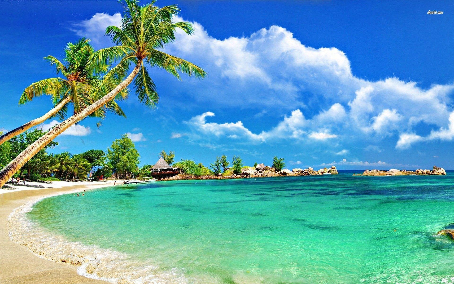 tropical beach wallpapers desktop - wallpaper cave