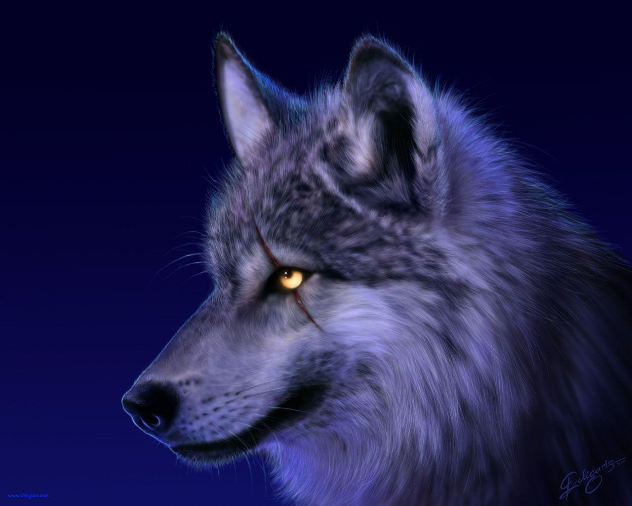 wolf wallpapers downloads