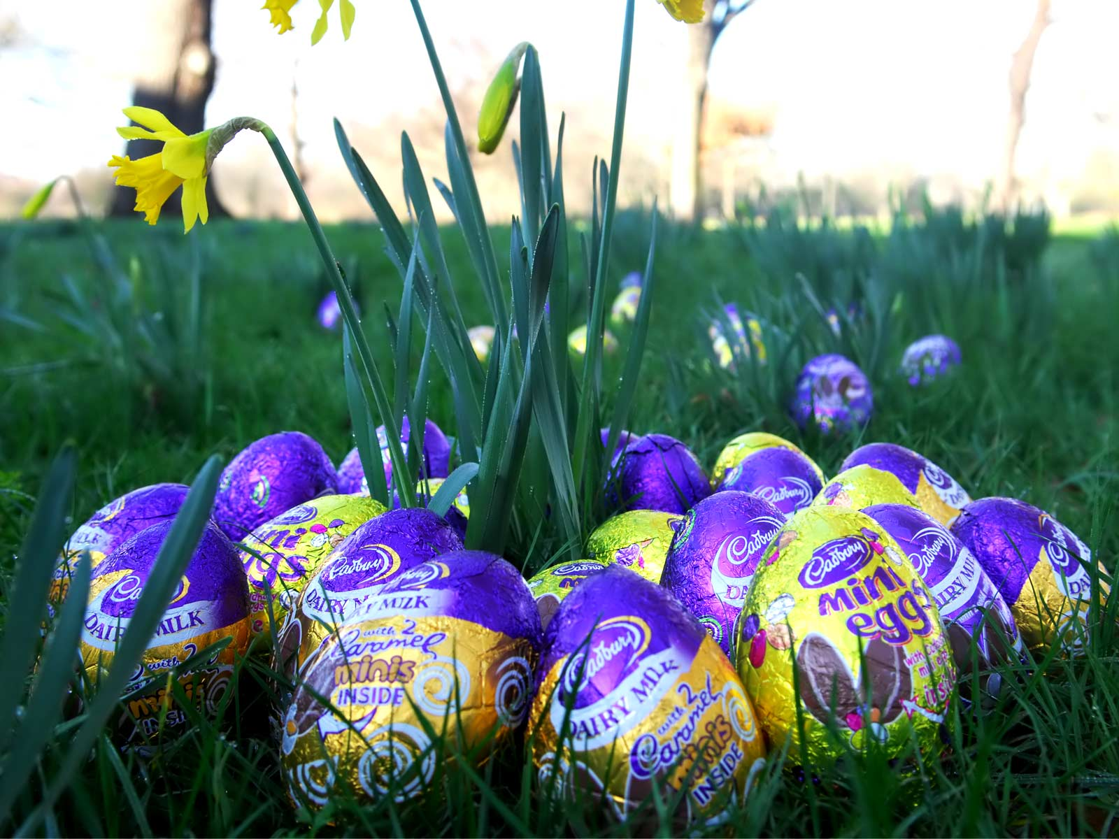 easter wallpapers hd - photo #28