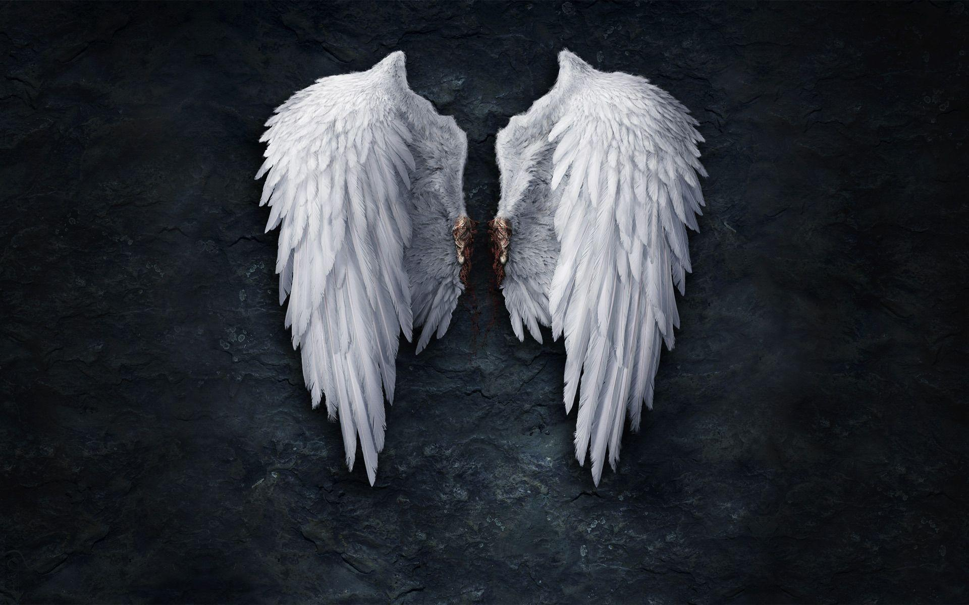 angel wings black background - photo #20