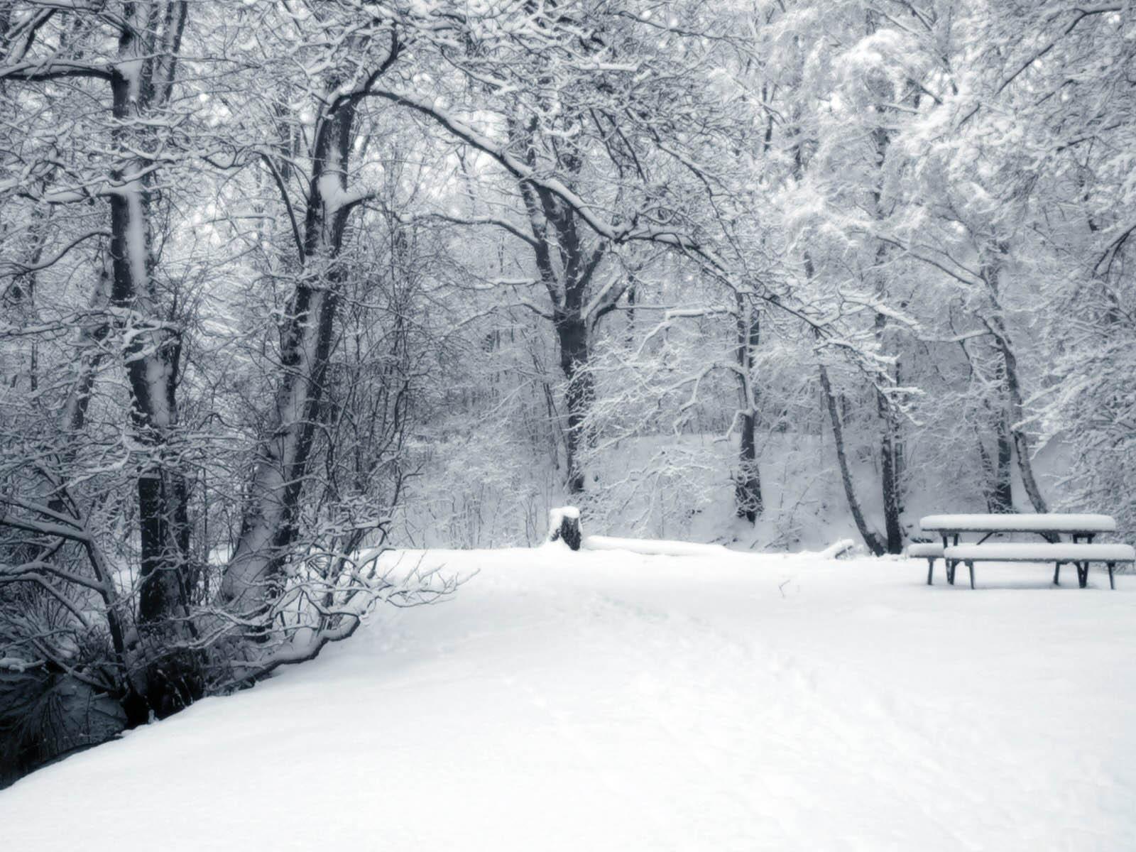Snow Background Tumblr