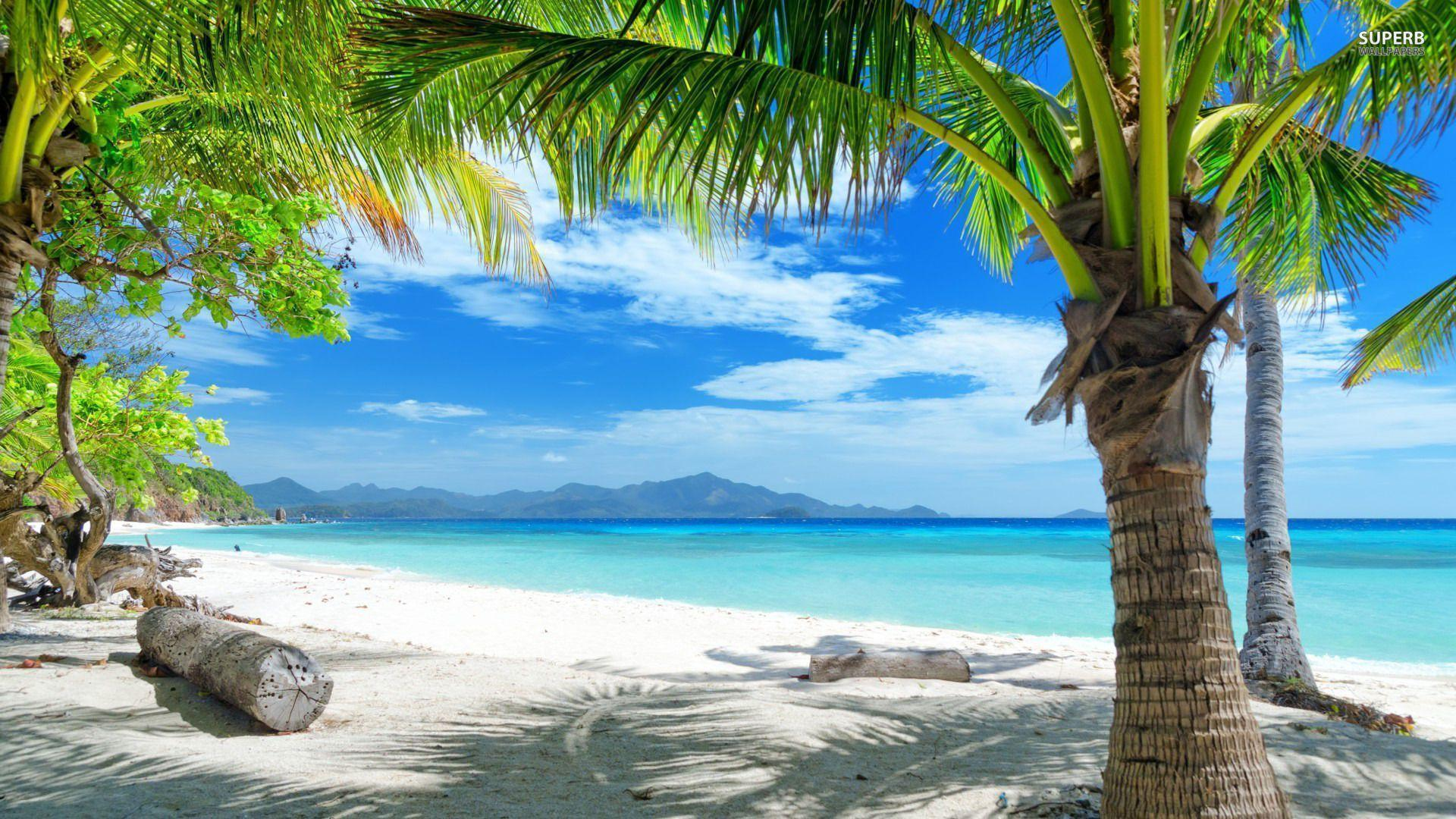 Tropical Beach | Download HD Wallpapers