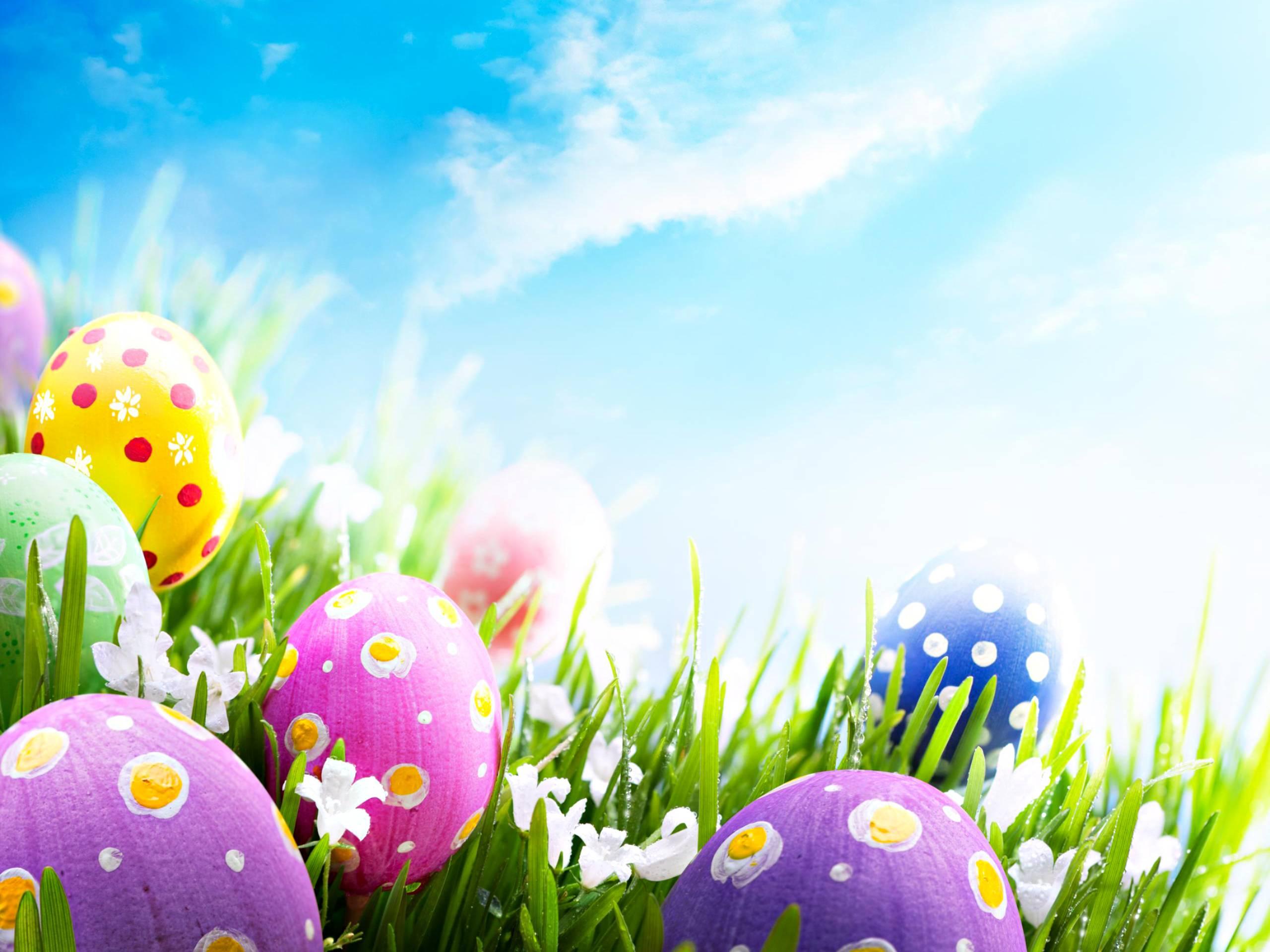 Easter Pics - Colours Desktop Wallpaper