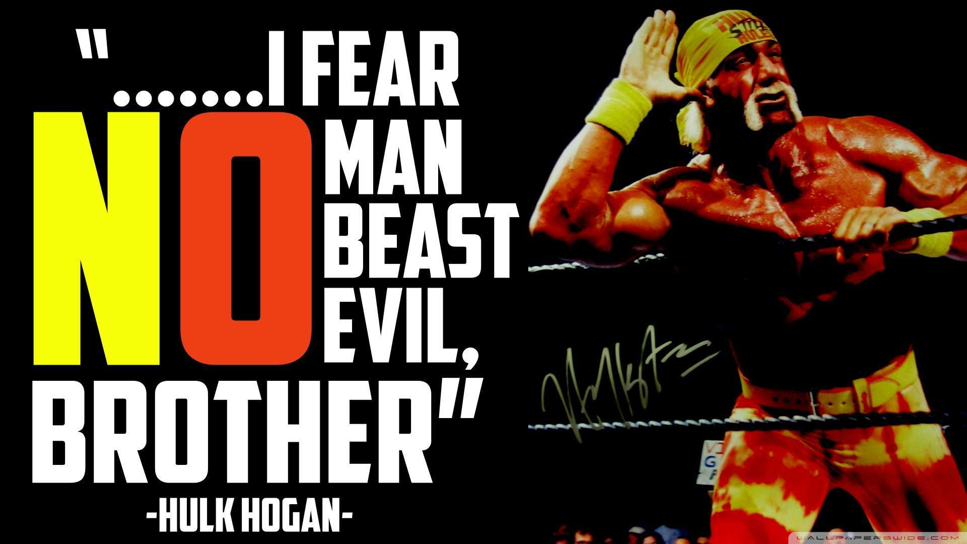 hulk hogan wallpapers - photo #13