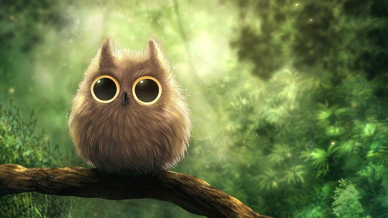 Cute Owl Wallpapers - Wallpaper Cave