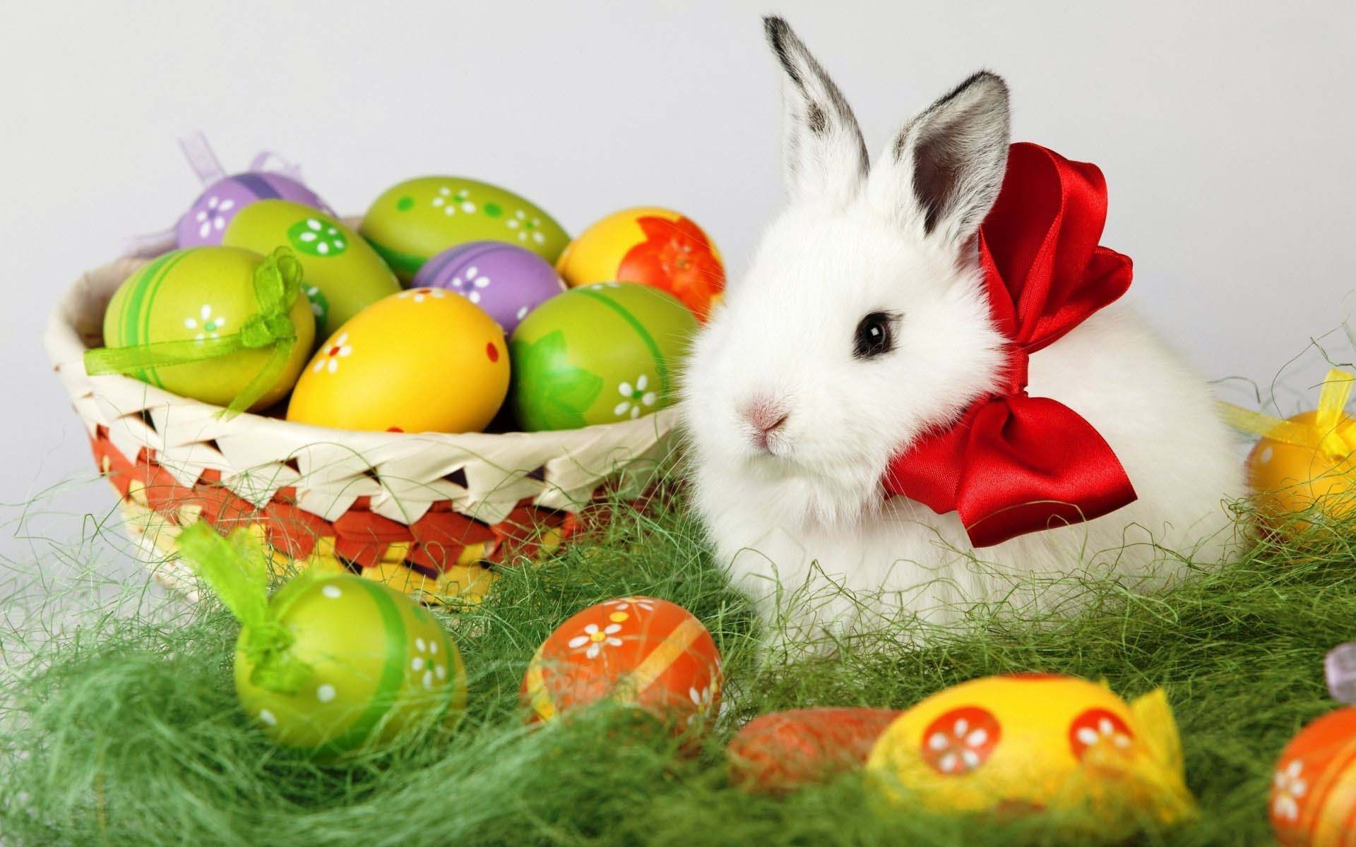 easter bunny and eggs 1920a—1200 holiday wallpaper cool pc wallpapers