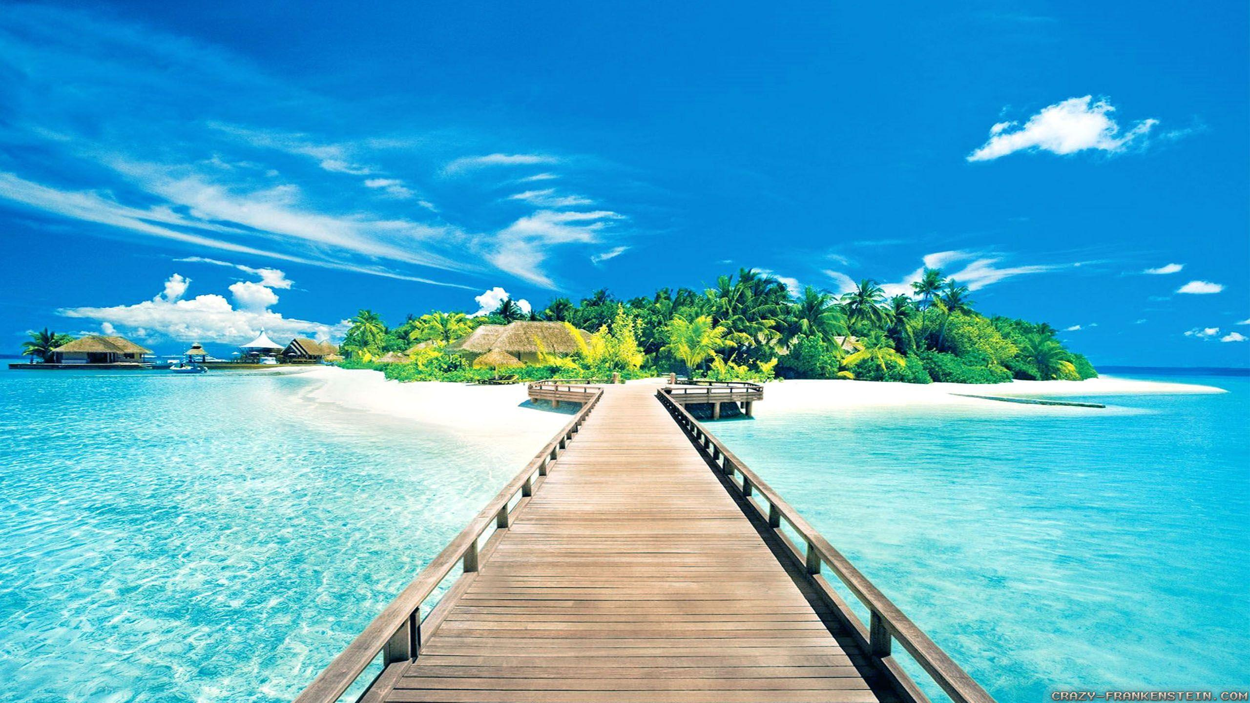 Image result for summer beach