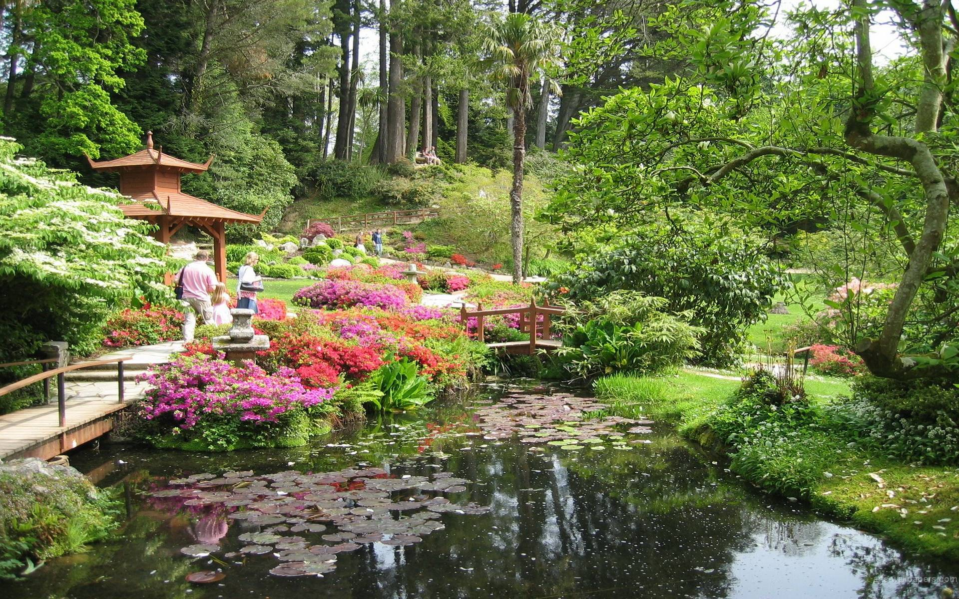 Hd wallpaper garden - Japanese Garden Wallpapers Wallpaper Japanese Garden Wallpapers