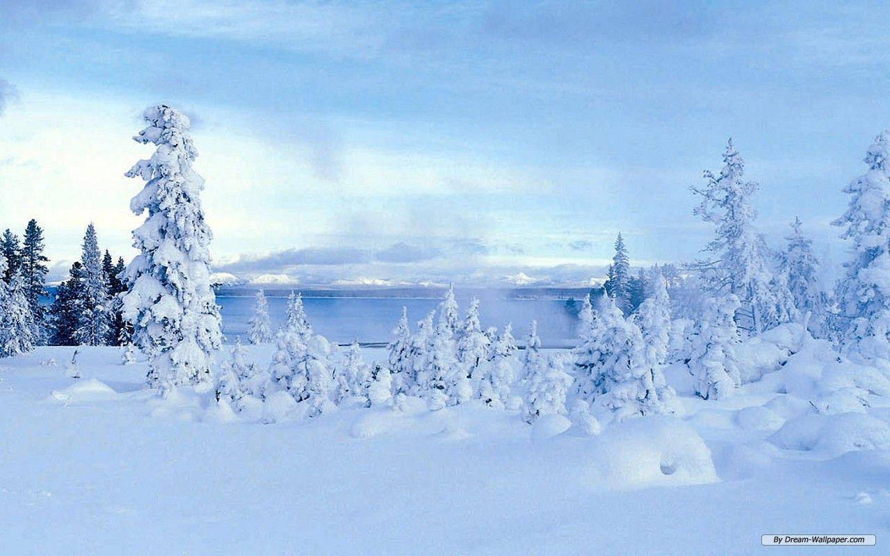 winter wonderland backgrounds wallpaper cave