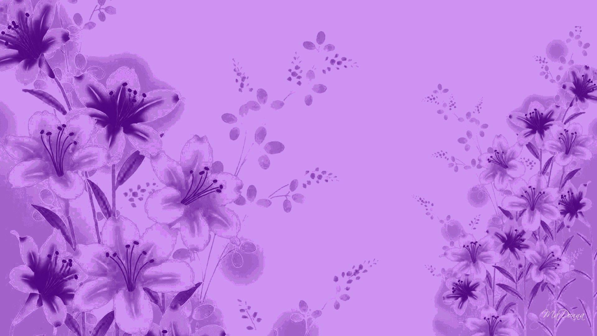 Lavender Color Wallpapers - Wallpaper Cave