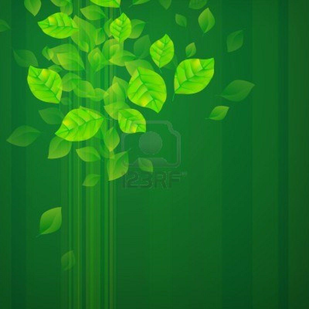 Green Backgrounds 17