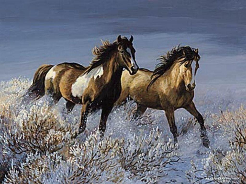 spring wild horse wallpaper - photo #45