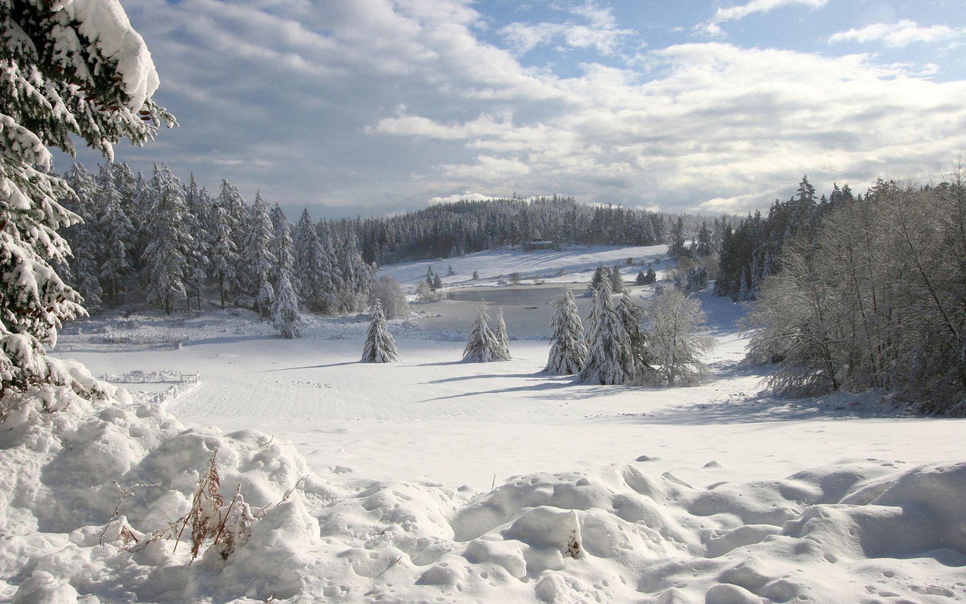 Winter wonderland desktop backgrounds wallpaper cave for Desktop gratis inverno