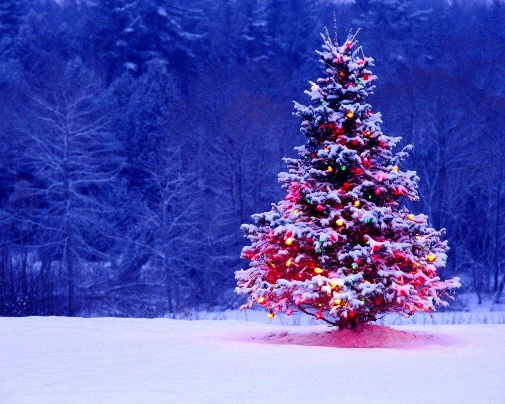 Christmas Tree Backgrounds.Christmas Tree Wallpapers Free Wallpaper Cave