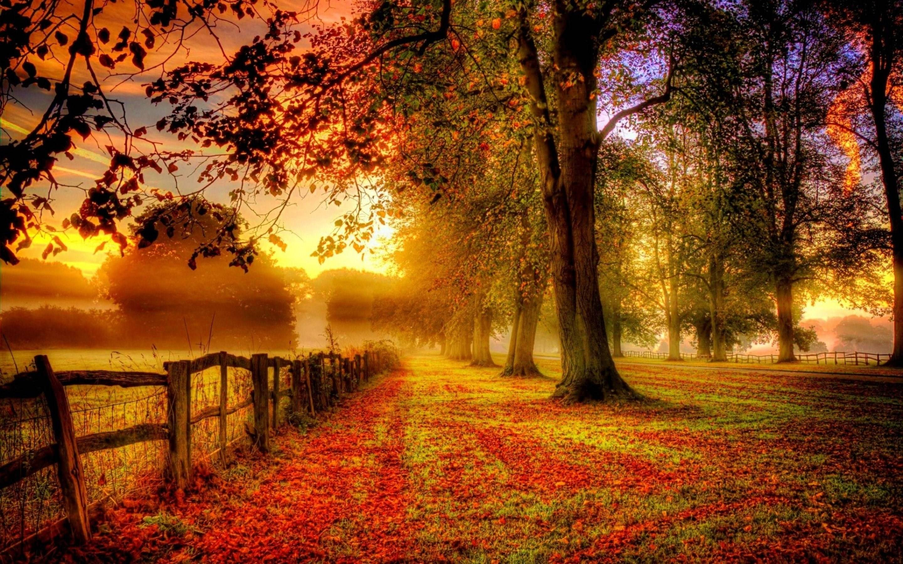 Delightful Fall Landscape Wallpapers   Wallpaper Cave