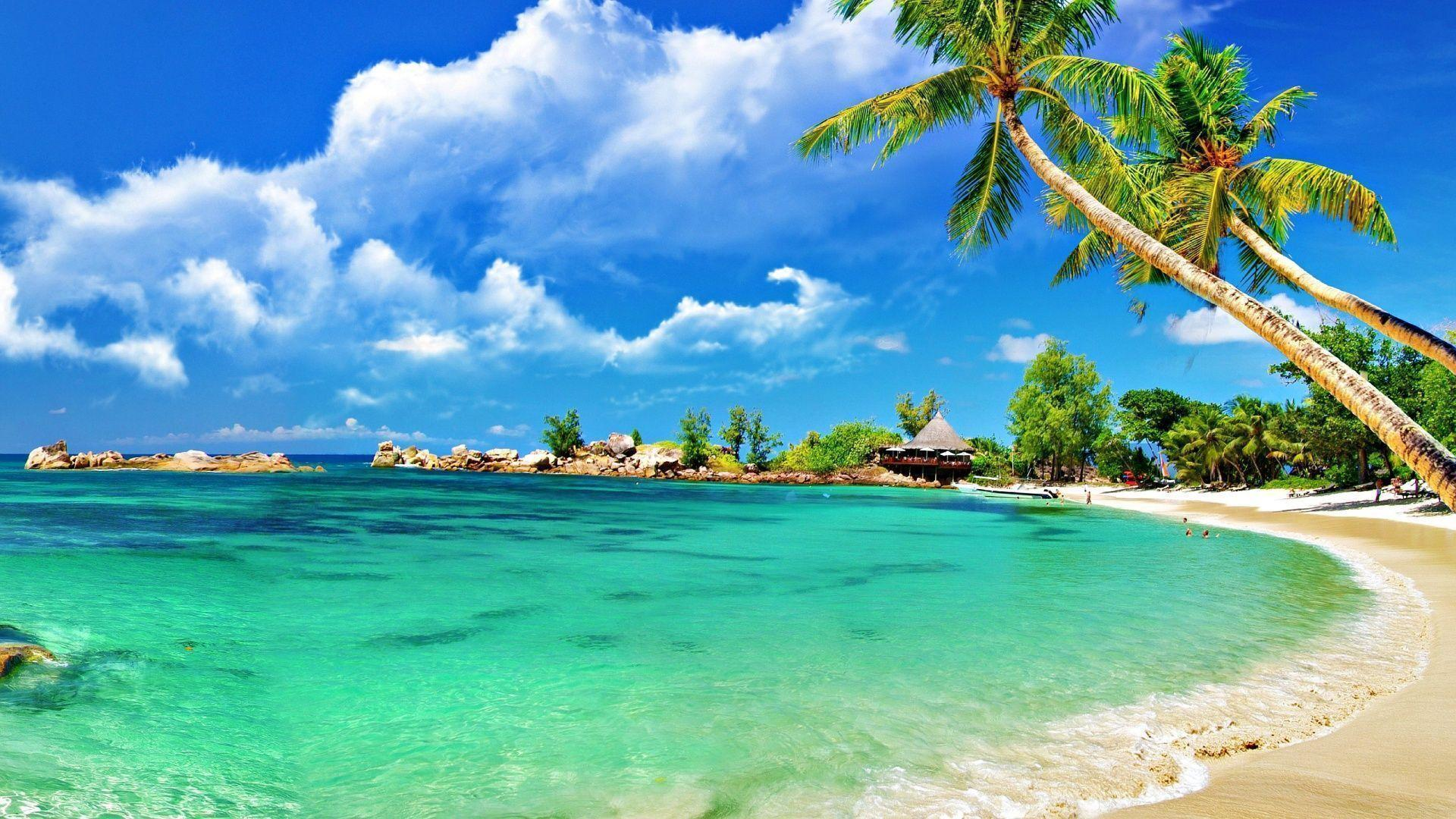 Tropical Beach Paradise Backgrounds: Beach Wallpapers 1920x1080
