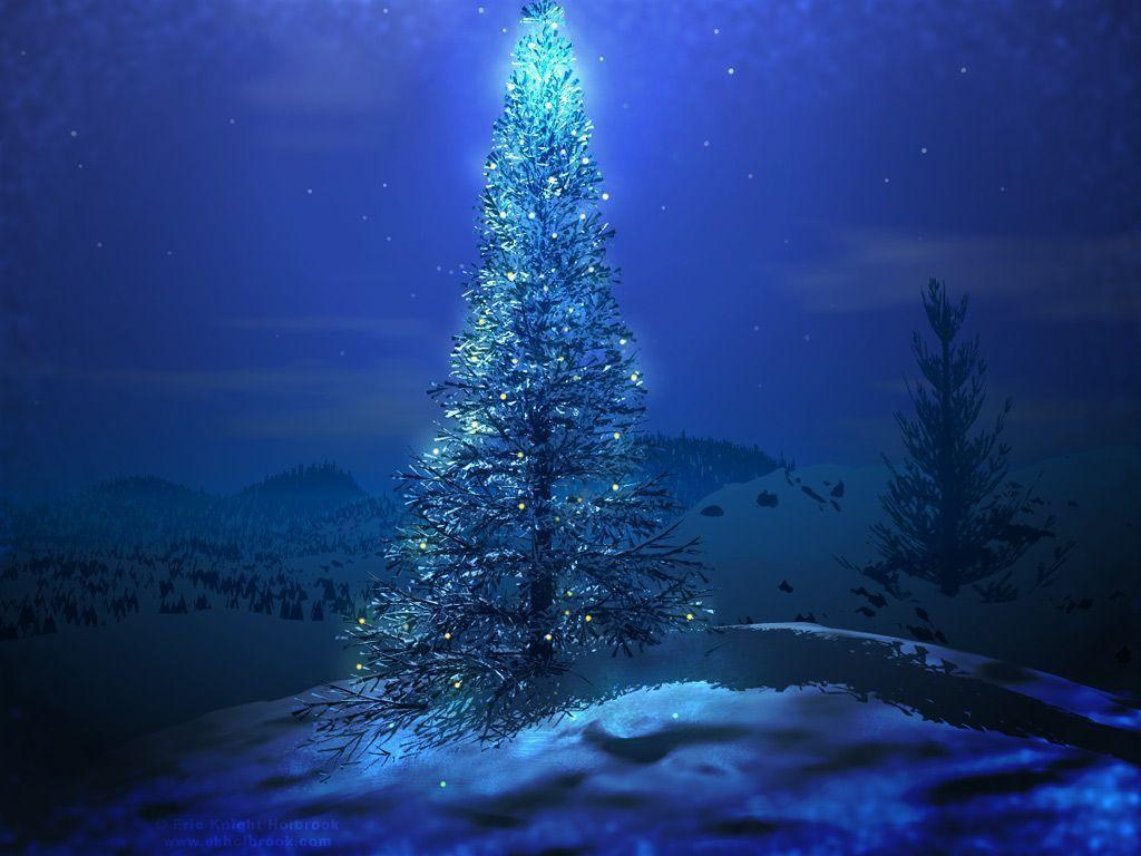 Christmas Tree Wallpapers HD Backgrounds Widescreen