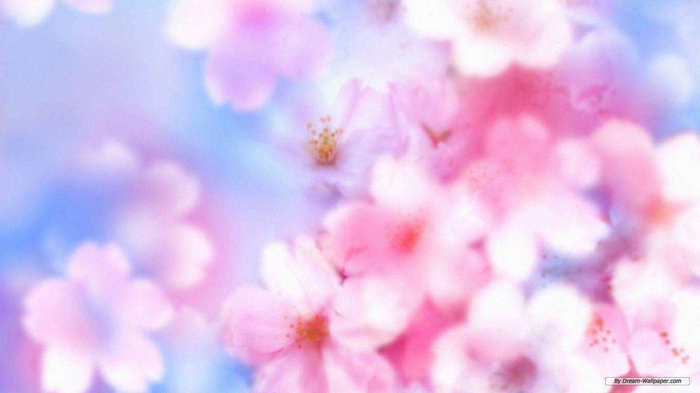 Floral Desktop Backgrounds - Wallpaper Cave