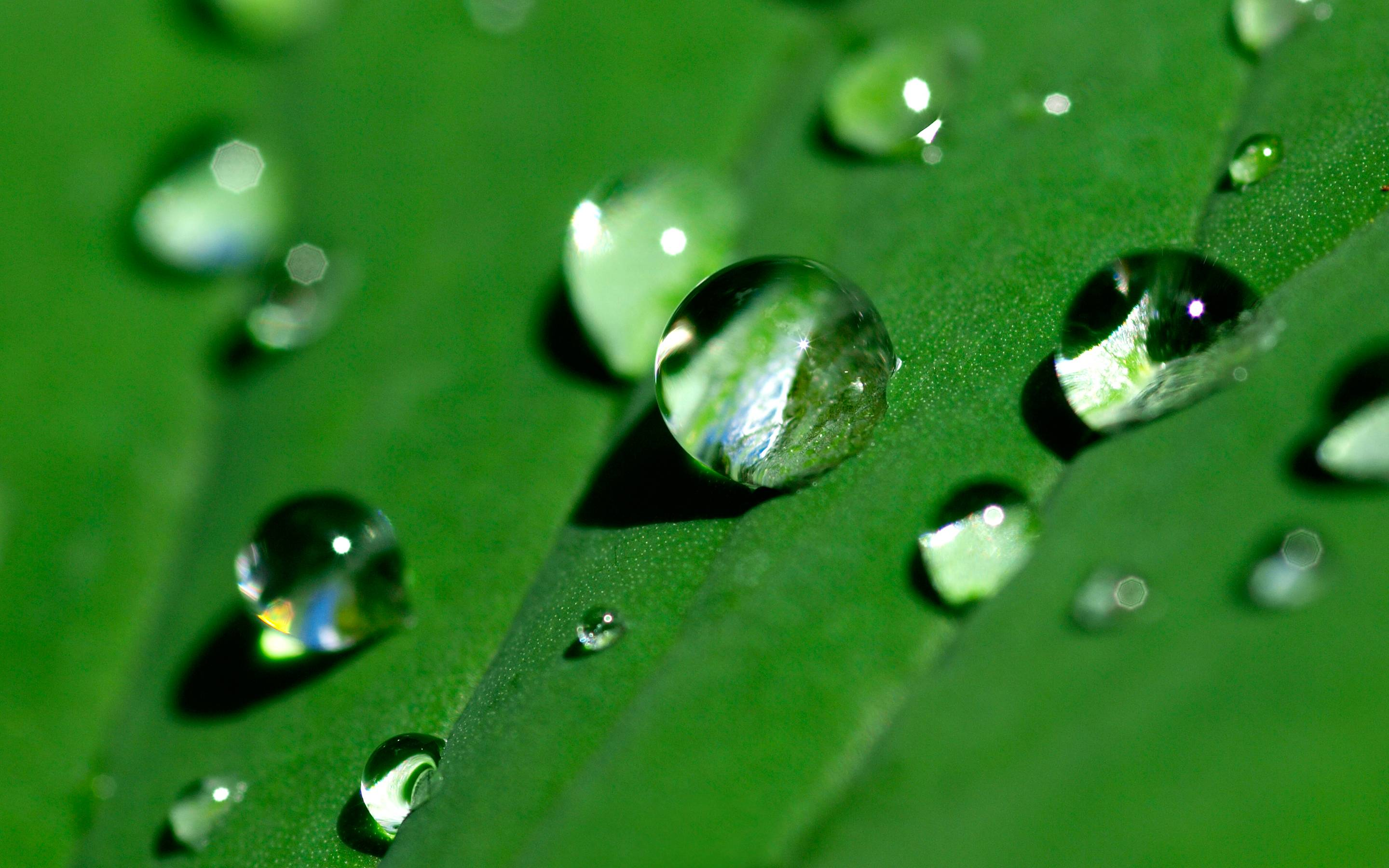 water droplets backgrounds wallpaper cave