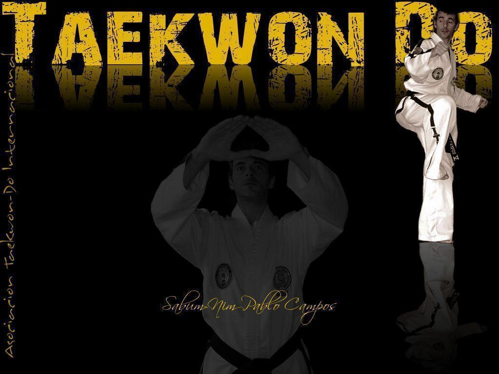 taekwondo wallpapers wallpaper cave