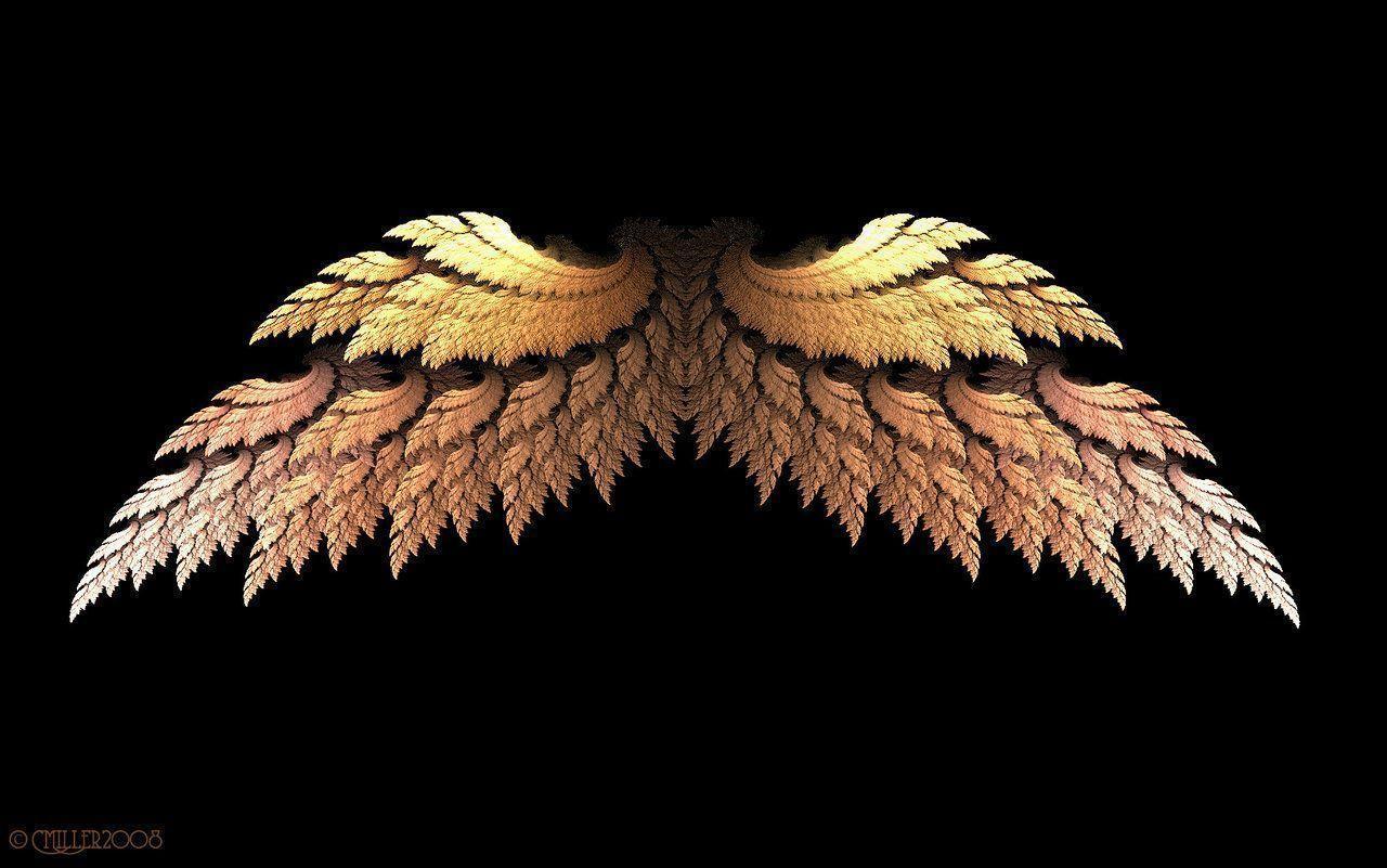 Angel Wings Wallpapers Wallpaper Cave