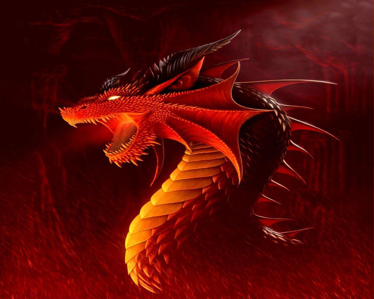 red dragons wallpaper - photo #17