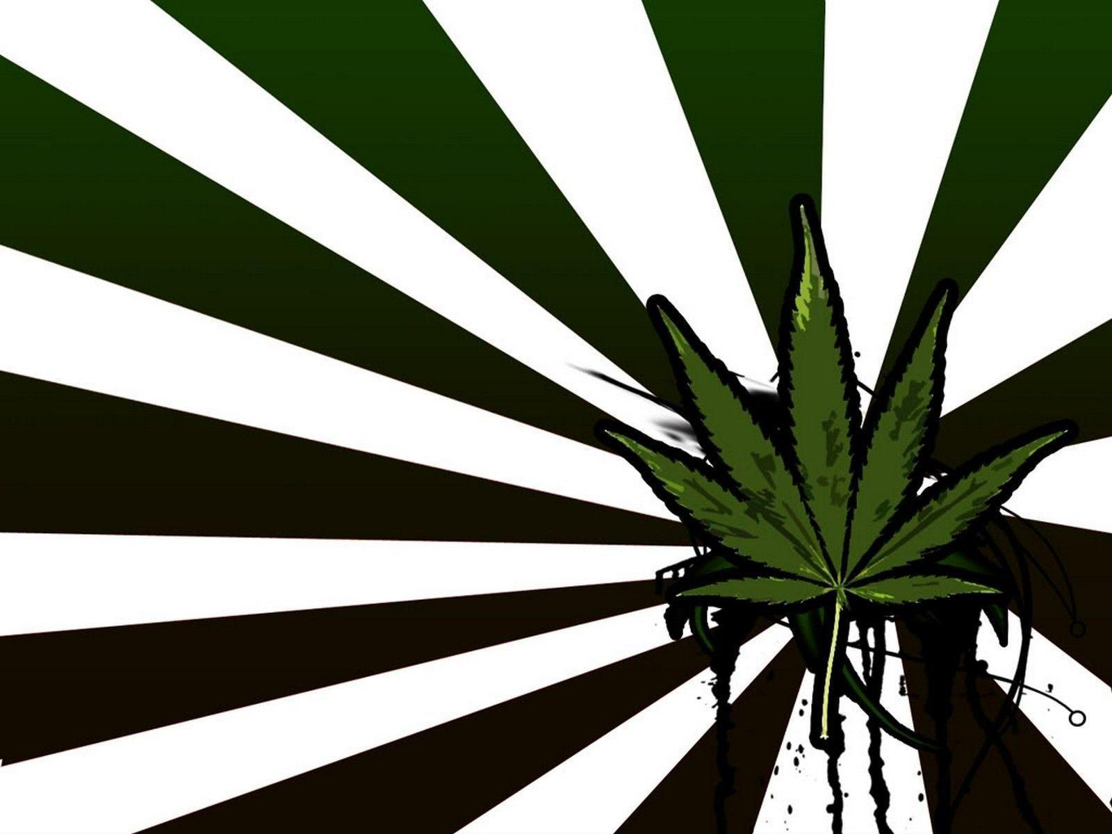 stoner wallpapers for android
