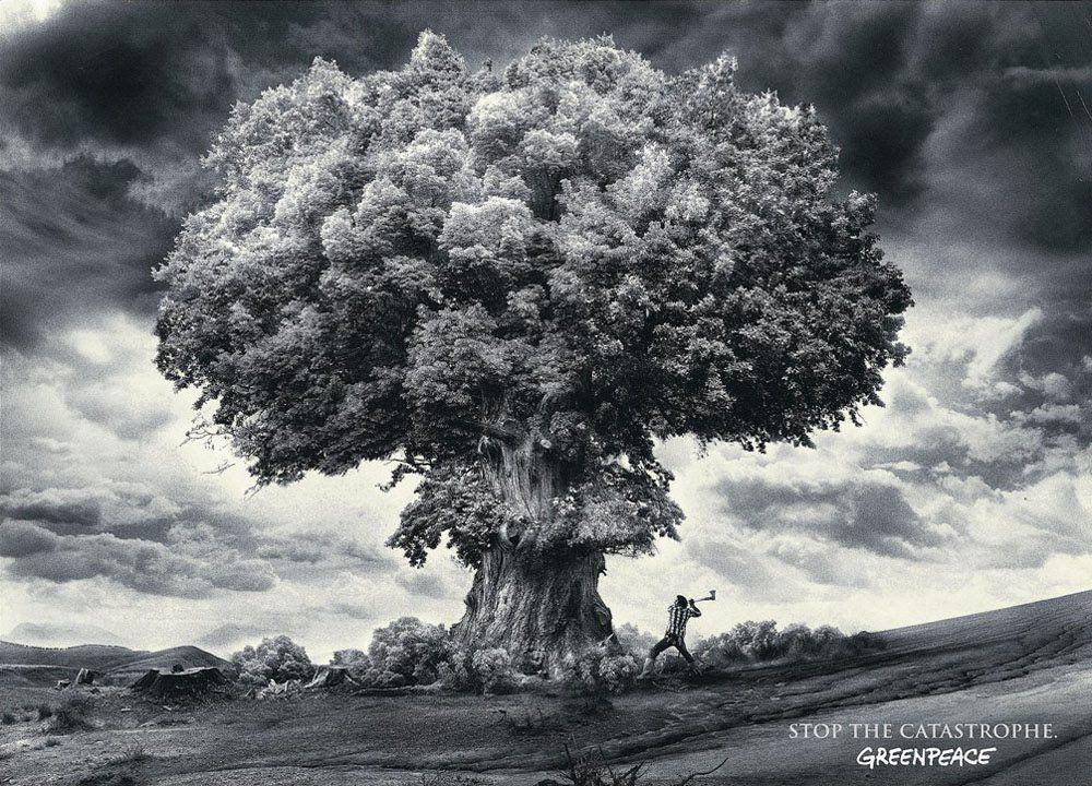 Gallery For > Nuclear Bomb Wallpaper